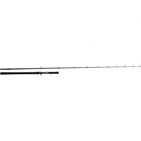 Canne Casting W3 Monsterstick-T2 2,33M 5XH 130g/260g
