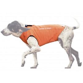 Gilet de protection pour chien Astro